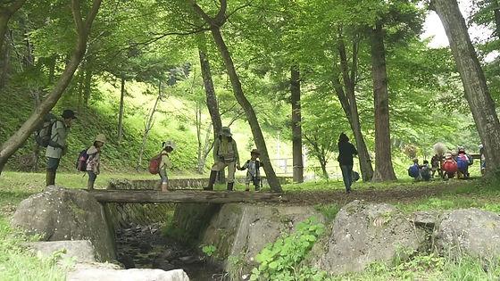 森のようちえん02.jpg