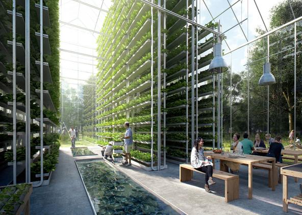 Green Vertical Farming