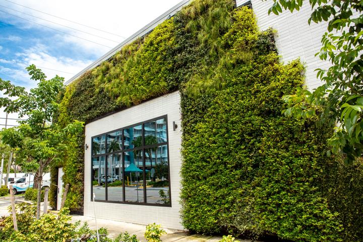 GreenWall Panel Outdoor