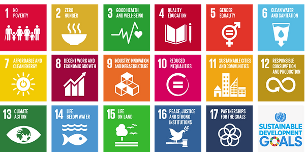 united-nations-sustainable-development-goals-primary-education