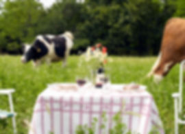 Salle à manger rurale