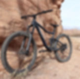Giant Trance Mountain Bike .JPG