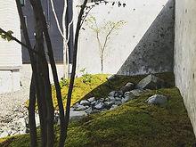 快晴の日にできた苔庭_#庭#自然#石#苔#草#樹#コンクリート壁#ヤトイチ造園#