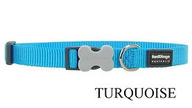 Collier TURQUOISE.jpg
