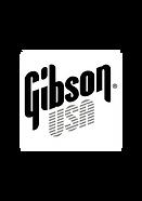Gibson_USA-01.png