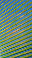 solar panel farm aerial
