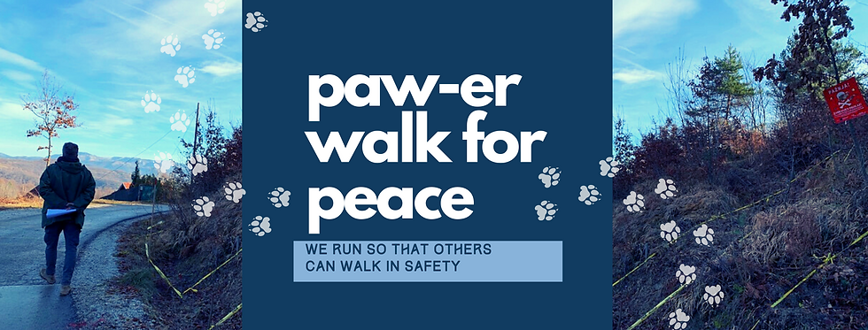 Website Paw-er walk page cover.png