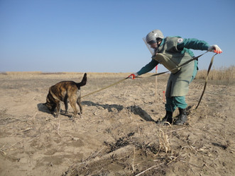 MLI Continues to Support Azerbaijan in Freeing its Soil of Landmines