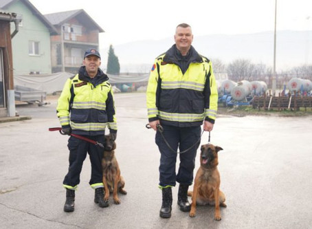 MLI Donates Two MDDs to Sniff out Landmines in Bosnia