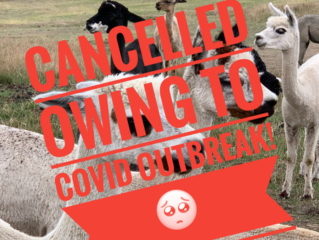 Cancellation of Valentine Open Farm Day 14 Feb 2021 - Holiday Inn Covid Outbreak