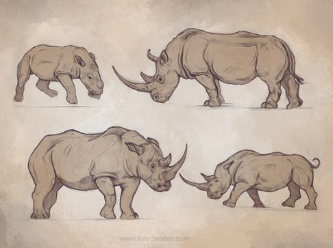 Rhino_03-2021.jpg