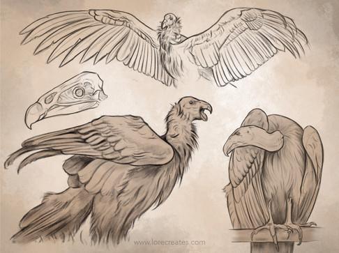 AOW9 Condors 05-21.jpg