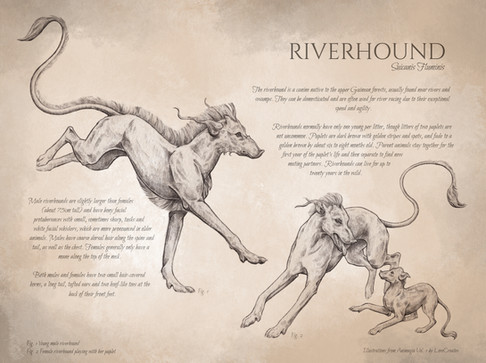 For IG Riverhound FINISHED v4.jpg