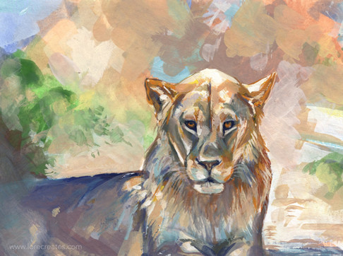 10 Lion study 10-20.jpg