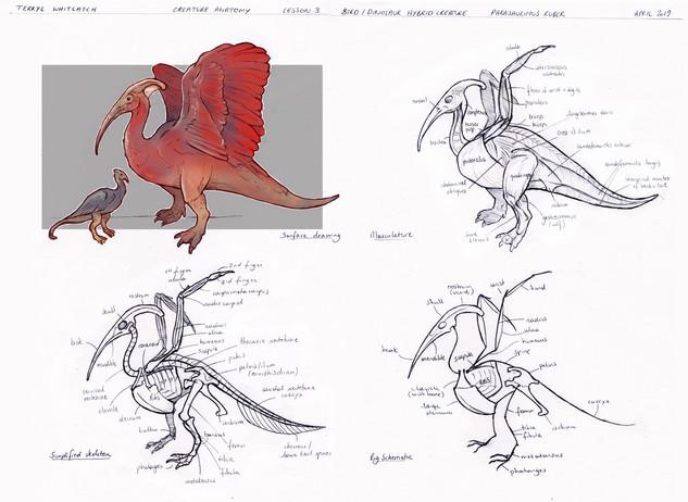 Bird/Dinosaur creature