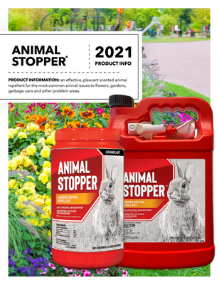 Animal Stopper Flyer