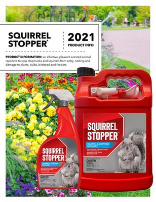 Squirrel Stopper Flyer