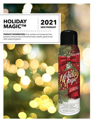 Holiday Magic Flyer