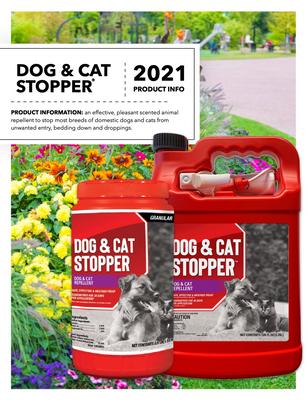Dog & Cat Stopper Flyer