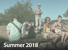 summer2018_1.jpg