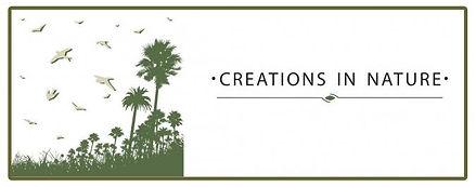 creation-in-naturenew.jpg