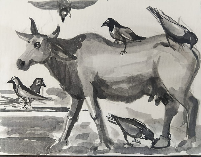 PRAVEEN UPADHYE | COW AND CROW | Ink on mount bord | 8 x 10 inch