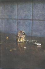 lonely teabag, 21x29 cm