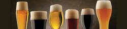 craft_beer_1800