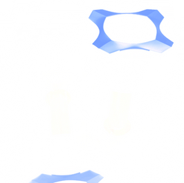 BLUE dumbbells (2).png