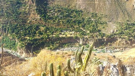 Colca-Wanderung 3.jpg