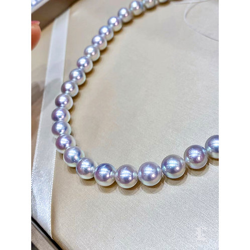 45cm, Blue Rose|藍玫瑰 8-8.5 mm Akoya Pearl Necklace w/ Japanese Certificat