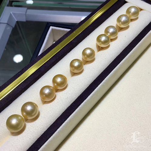 12-13 mm or 13-14 mm Golden South Sea Pearl Classic Earrings 18k Gold - AAAA