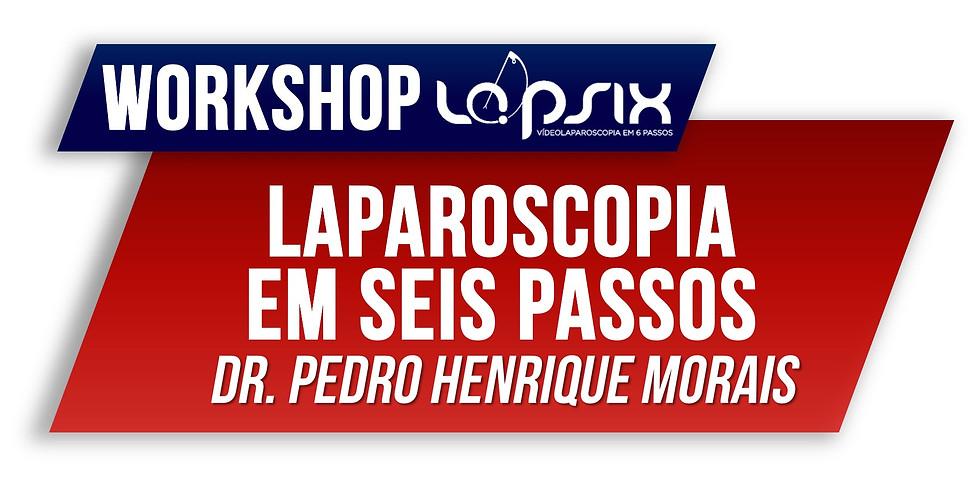 WORKSHOP LAPSIX - Laparoscopia em Seis Passos