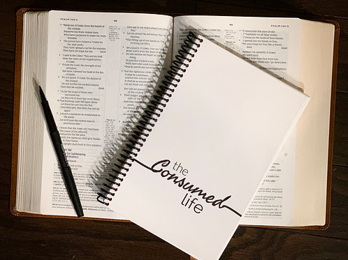 CONSUMED LIFE JOURNAL