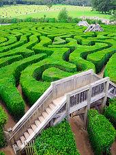 Fotolia_58150777_L_labyrinth.jpg