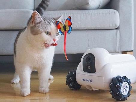 Pumpkii Robot es el primer compañero y cuidador para tus mascotas