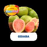 POLPA-GOIABA.png