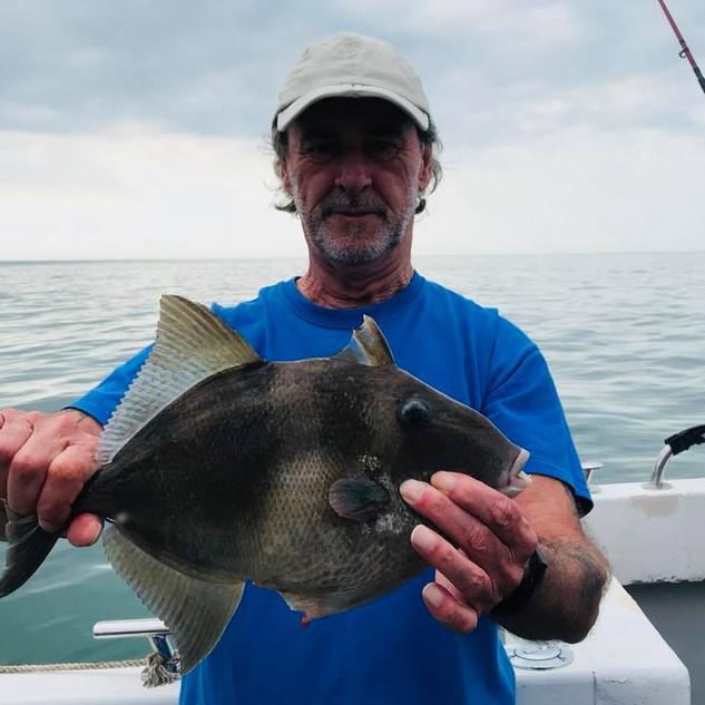 teddie-boy-trigger-fish-001.jpg