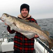 pollock-katfish-charters-lymington