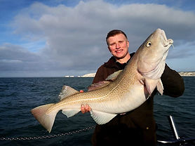 Winter cod fishing with Katfish Charetrs