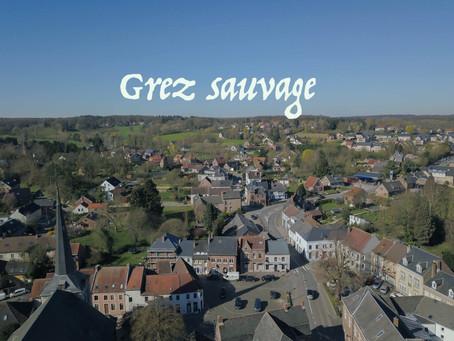 21/03/20 Lancement de la page facebook Grez Sauvage