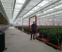 CEO of Bioled in installing the system