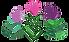 Logo Galilee Drems.png