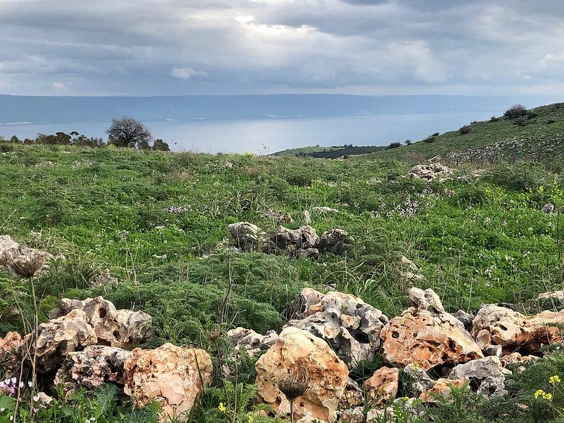 Upper Galilee landscape Israel.jpg