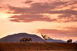 Ziua 14_Parcul Național Kruger.jpg