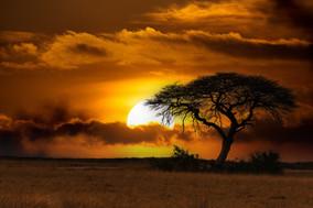 Cover_Africa de Sud.jpg