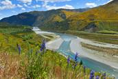 Ziua 8_Pasul Lewis Alpii neozelandezi.jpg