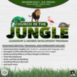 C.I.J. Info Flyer (3).png