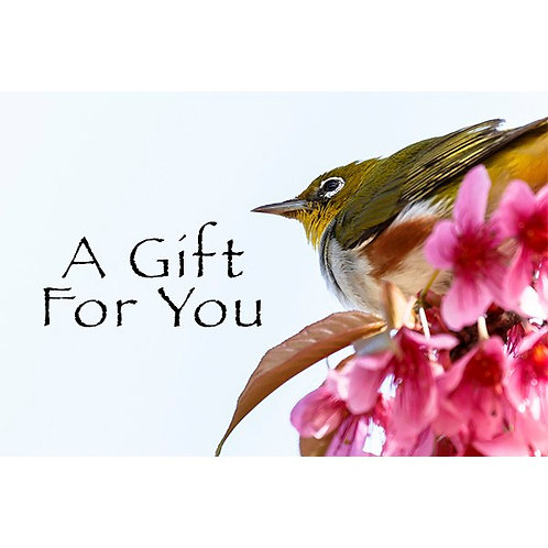 A Gift For You - Bird with Flowers