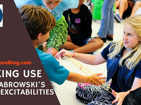 Making Use of Dabrowski's Overexcitabilities